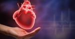 Tất cả những dấu hiệu chứng tỏ nguy cơ bạn mắc bệnh tim mạch rất cao