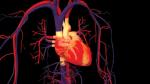 Cơ thể đang lên tiếng báo hiệu nguy cơ bệnh nhịp tim nhanh đang đến rất gần bạn