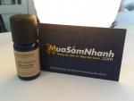 Tinh dầu Ngọc Lan Tây - Món quà thiên nhiên dành tặng cho sức khỏe của bạn