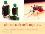 Mẹo đuổi muỗi hiệu quả với 3 giọt dầu gió