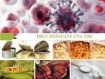 [Cảnh Báo] Top 10 thực phẩm khiến bạn mắc ung thư trước tuổi 30