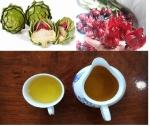 Công dụng của trà Atiso? Uống trà Atiso bao nhiêu là đủ?