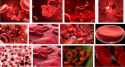 Nguy cơ bệnh tất của bạn biểu hiện qua nhóm máu
