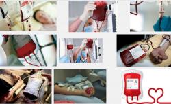 Nhóm máu và bệnh tật liên hệ với nhau ra sao?