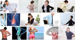 3 Động tác cơ bản đánh ngay cơn đau lưng