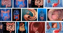 Dấu hiệu cho thấy nguy cơ ung thư ruột già đang đe dọa tính mạng bạn