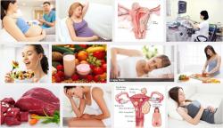 Chế độ dinh dưỡng an toàn cho chị em mắc bệnh u xơ tử cung