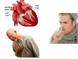 Tim của bạn đang bị đem dọa bởi triệu chứng bệnh hở van hai lá