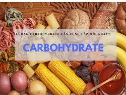 Lượng carbohydrate bạn cần cung cấp mỗi ngày?