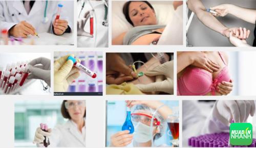 Nhóm máu O là nhóm máu có thể cung cấp cho tất cả nhóm máu khác
