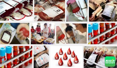 Nhóm máu AB là nhóm máu hiếm và ít với khoảng gần 5% dân số Việt Nam