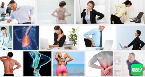 bộ lưng bên ngoài cũng liên quan đến sức khỏe của lục phủ ngũ tạng bên trong