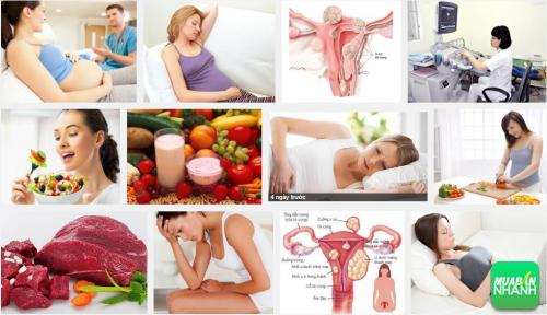 Chế độ dinh dưỡng an toàn cho chị em mắc bệnh u xơ tử cung, 159, Phương Thảo, Cẩm Nang Sức Khỏe, 03/10/2016 10:02:57