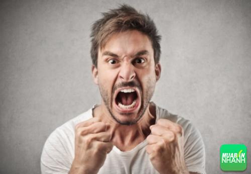 Nếu bạn là người không kiểm soát được cơn tức giận, hay xem ngay nhé!, 171, Phương Thảo, Cẩm Nang Sức Khỏe, 03/10/2016 17:34:14