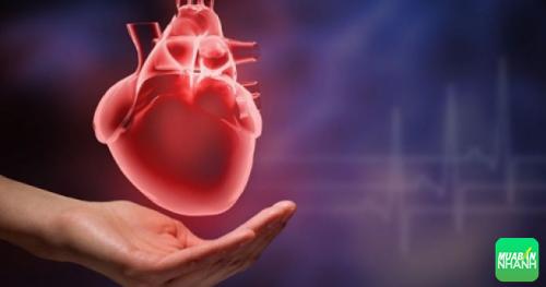 Phát hiện bệnh sớm để cứu chữa trái tim của bạn