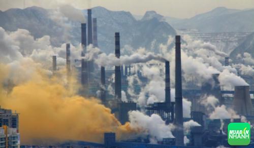 Tiếp xúc với mỗi trường ô nhiễm bộ não sẽ bị ảnh hưởng nặng