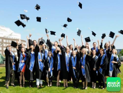 Những người học đại học thường có tuổi thọ cao hơn người học phổ thông