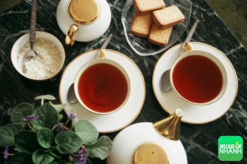 Nước trà rất tốt cho người mắc bệnh lý huyết áp thấp