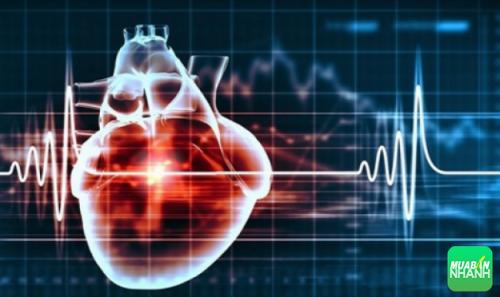 Nhịp nhanh trên thất là bệnh tim mạch có nguy cơ khiến bệnh nhân tử vong cao