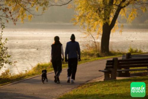 Dạo bộ hoặc vận động cơ thể vào ban đêm là một trong những cách dễ ngủ
