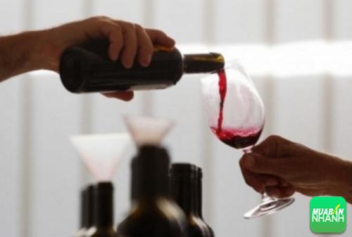 Rượu không hề đem lại lợi ích cho bạn mà còn khiến bạn mất ngủ