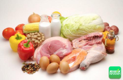 Cung cấp cho cơ thể những chất đạm từ thịt trắng