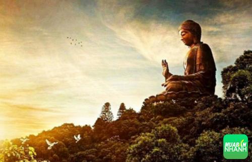 Quy trình cuộc đời con người chỉ có một tỳ kheo nói rằng mạng người sống chỉ có một hơi thở