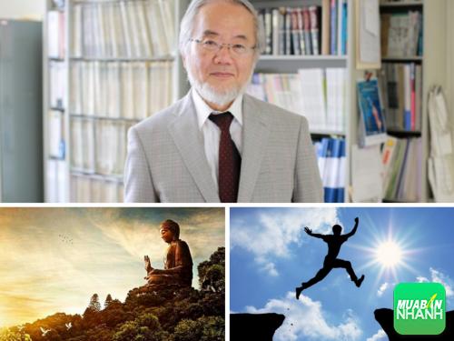 Ý niệm vô thường mang đến giải Nobel Y sinh học 2016 cho Yoshinori Oshumi, 269, Phương Thảo, Cẩm Nang Sức Khỏe, 19/10/2016 10:17:45
