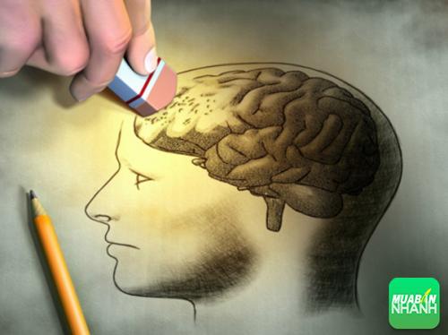 Cơ thể đang cảnh báo bệnh mất trí qua 12 dấu hiệu cơ bản, 284, Phương Thảo, Cẩm Nang Sức Khỏe, 21/10/2016 11:57:34
