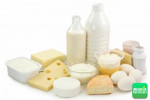 Các sản phẩm chế biến từ sữa
