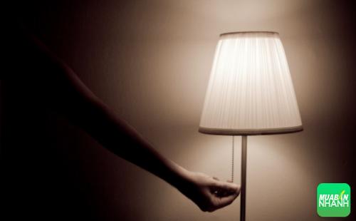 Tắt những ánh sáng thu hút côn trùng trong nhà bạn.