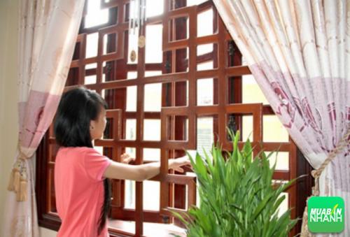 Đóng cửa giúp hạn chế côn trùng nhất là kiến ba khoang xâm nhập vào nhà bạn.