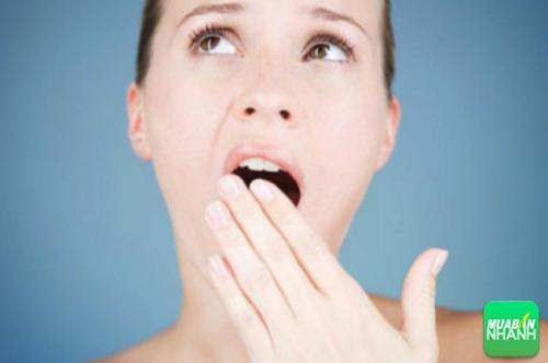Lá ổi có công dụng kháng khuẩn và giảm cơn đau từ bệnh răng miệng.