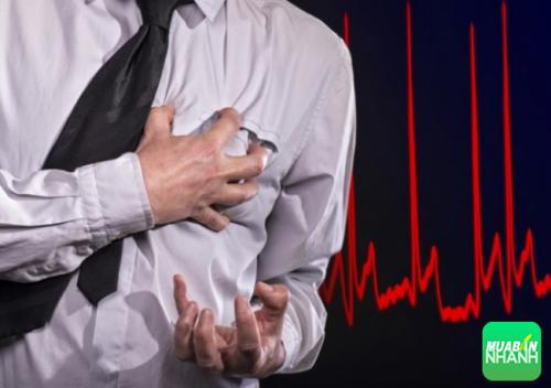 Cholesterol và các vấn đề tim mạch