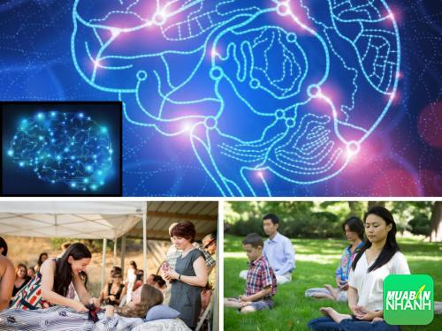 Khoa học công nhận tâm có thiện thì cơ thể sẽ khỏe mạnh, 316, Phương Thảo, Cẩm Nang Sức Khỏe, 28/10/2016 09:36:06