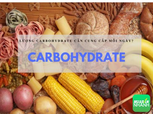 Bạn đã bao giờ tự lên cho mình kế hoạch dinh dưỡng với lượng carbohydrate mỗi ngày.