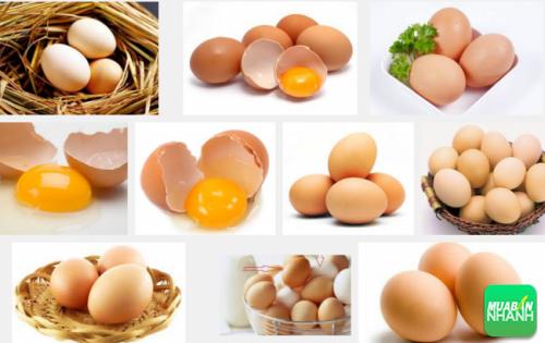 Mỗi ngày ăn 1 quả trứng gà