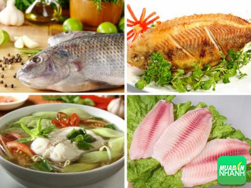 Mỗi tuần, chúng ta nên ăn 2 bữa có cá sẽ cung cấp một nguồn protein nạc tốt hơn thịt đỏ.