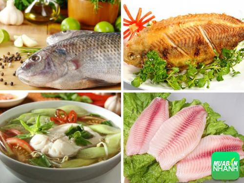 Tại sao chuyên gia dinh dưỡng luôn khuyên bạn nên ăn cá?, 323, Phương Thảo, Cẩm Nang Sức Khỏe, 29/10/2016 11:07:00
