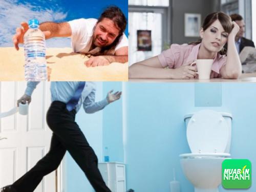 Nếu tình trạng khát nước và đi tiểu báo hiệu quả thận đang gặp vấn đề.