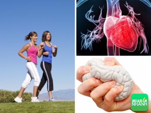 Thường xuyên đi bộ giúp bạn ngăn ngừa các bệnh tim mạch và áp lực cuộc sống.