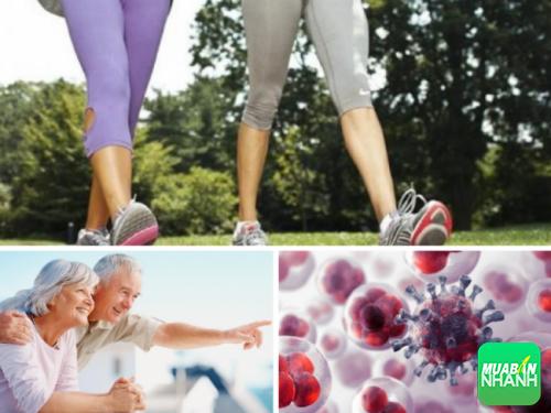 Bệnh về tuổi tác và ung thư sẽ được hạn chế nếu bạn thường xuyên đi bộ.