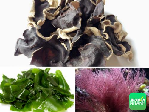 Rong biển, tảo tía, mộc nhĩ đen