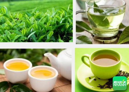 Trà Phổ Nhĩ, trà xanh