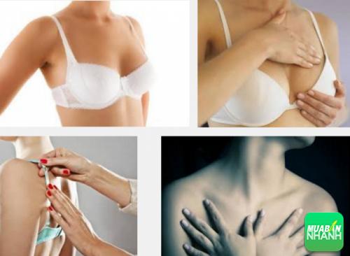 Có nhiều người nghĩ rằng mặc áo ngực là nguyên nhân gây ung thư vú.