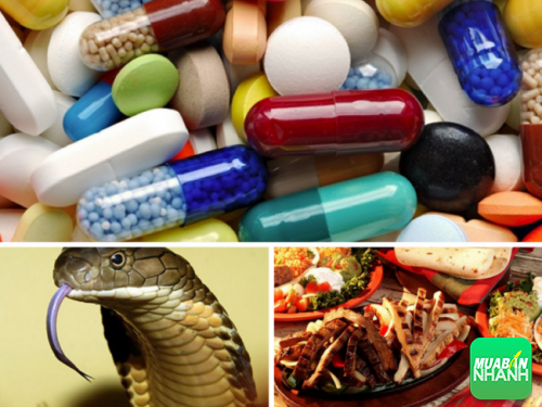 Sốc phản vệ thường xảy ra khi sử dụng thuốc, thức ăn và có thể là nọc độc của động vật.