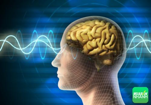Liệu pháp tâm lý là phương án khả quan giúp giảm tình trạng của bệnh.
