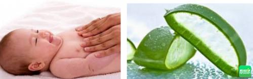 Massage bằng lô hội