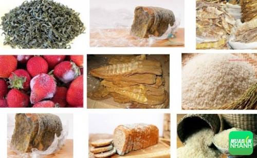 thực phẩm ẩm mốc