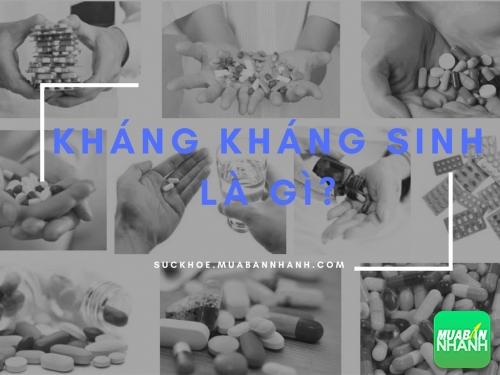 Bạn có biết kháng kháng sinh có thể gây chết người?, 417, Phương Thảo, Cẩm Nang Sức Khỏe, 05/01/2017 11:26:33